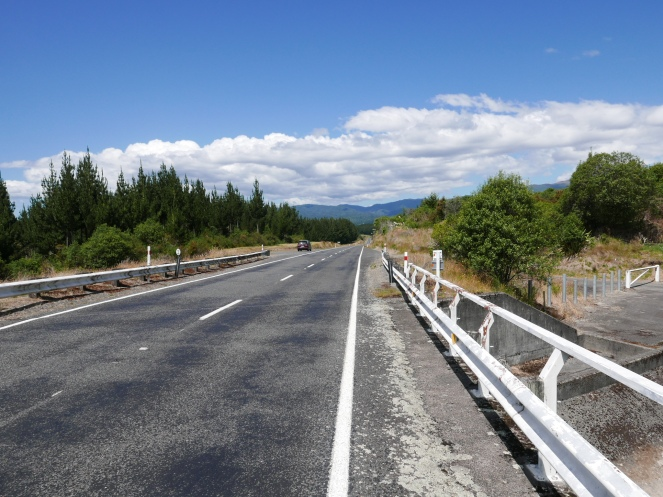 Long empty roads on the way to Tongariro